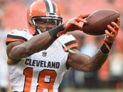 Report: Patriots Finalizing Deal with Wide Receiver