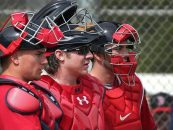 Red Sox Spring Training Preview: Confusion Behind the Plate