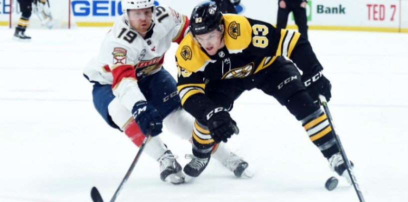 3 Bruins Prospects That Impressed This Season