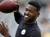 Breaking: Patriots Sign Antonio Brown