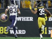 Fitzpatrick Leads Steelers Defense to Crucial Victory