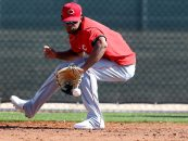 Cincinnati Reds: Several Players Standing Out Early in Spring