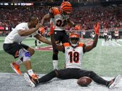 Cincinnati Bengals Free Agency and Draft Analysis