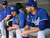 David Price to Pay Dodgers' Minor Leaguers