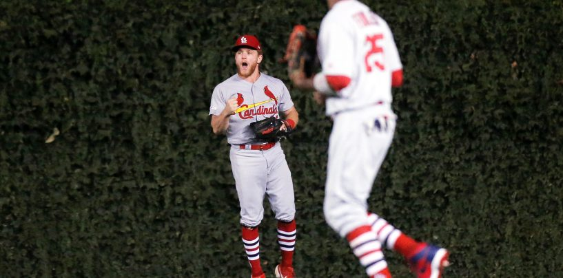 Examining the St. Louis Cardinals' Outfield Situation