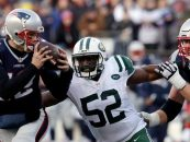 Patriots Agree to Terms With Linebacker David Harris