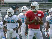 Miami Dolphins 2021 Team Preview