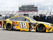 NASCAR DFS: Cookout Southern 500